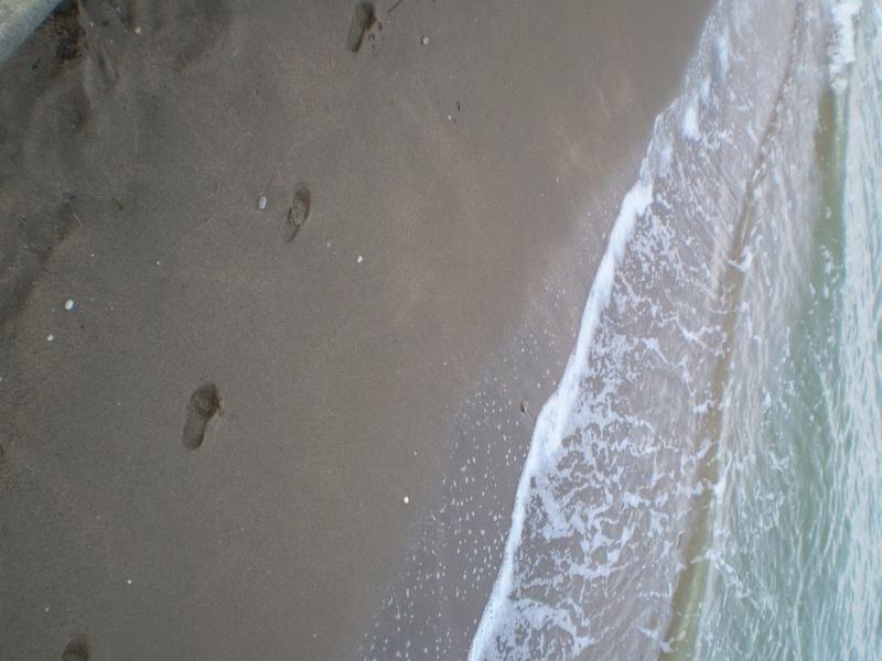http://i77.servimg.com/u/f77/09/02/08/06/emp210.jpg