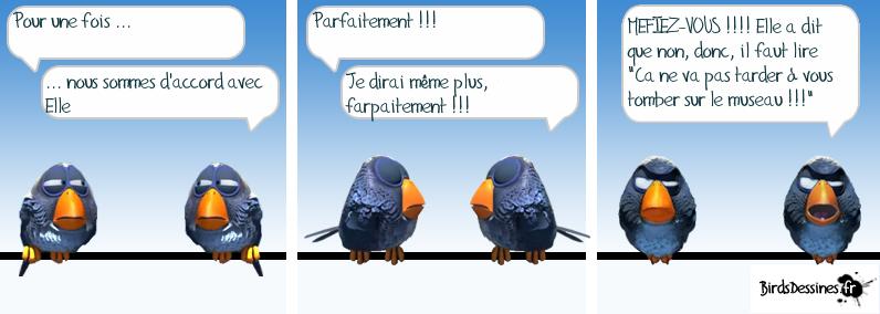 http://i77.servimg.com/u/f77/09/02/08/06/oiseau11.png