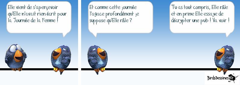 http://i77.servimg.com/u/f77/09/02/08/06/oiseau12.png