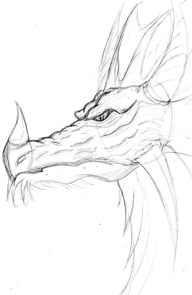 Dessiner dragon t te - Dessin de tete de dragon ...