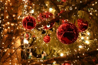 Bonnes fêtes ! dans ma vie noel_b10