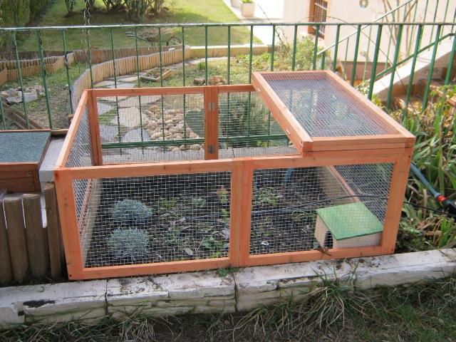 Il mio terrario con le mie tartarughe pagina 2 for Terrario per tartarughe acquatiche