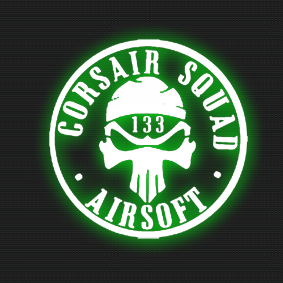 Logo CSA 133