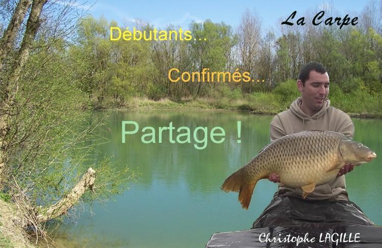 Pêche à la carpe - Débutant