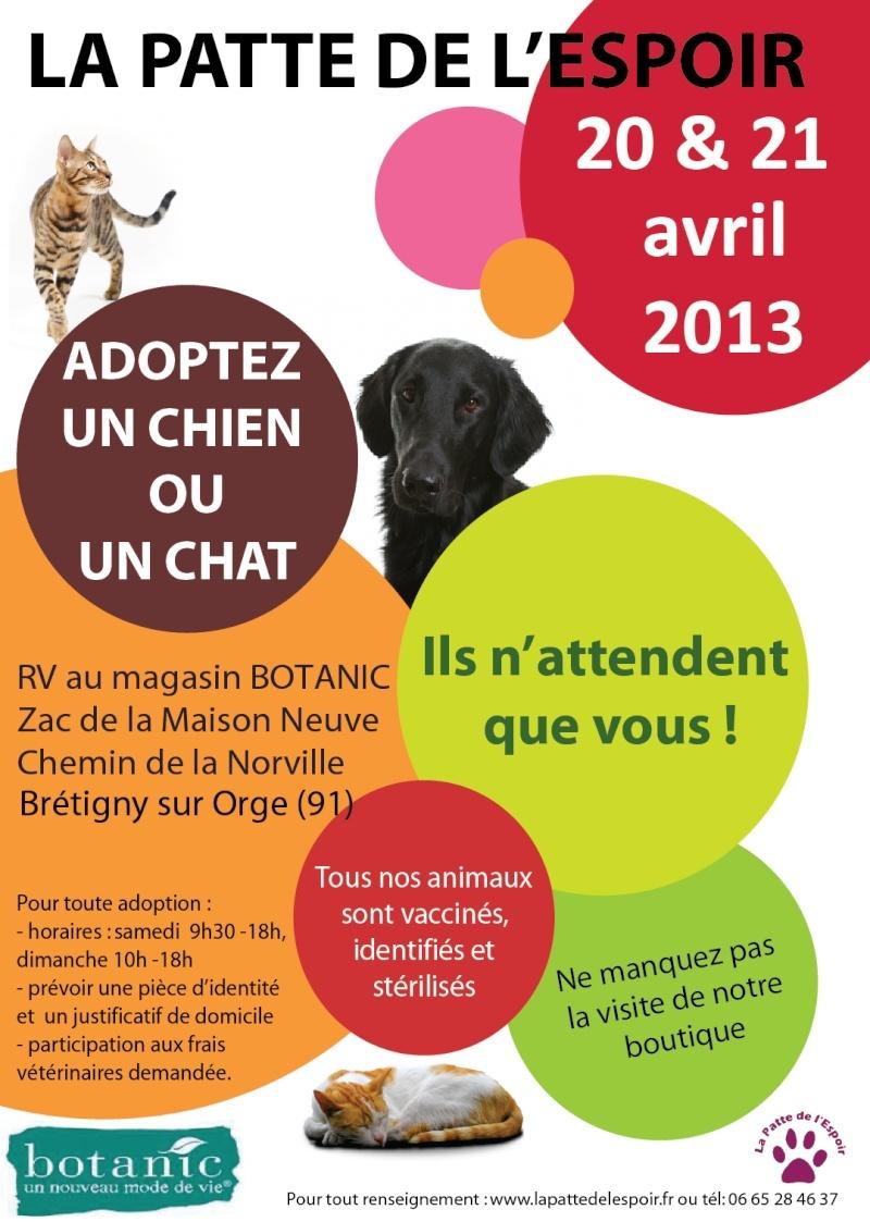 2013-01-12-affiche-bretigny.jpg