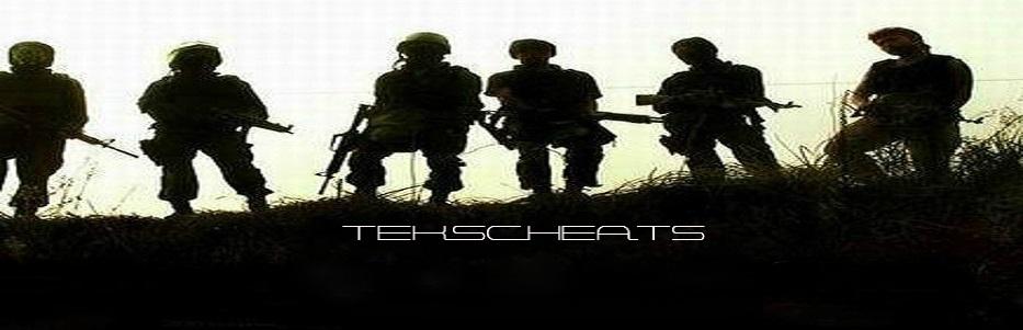 TEKSCHEATS