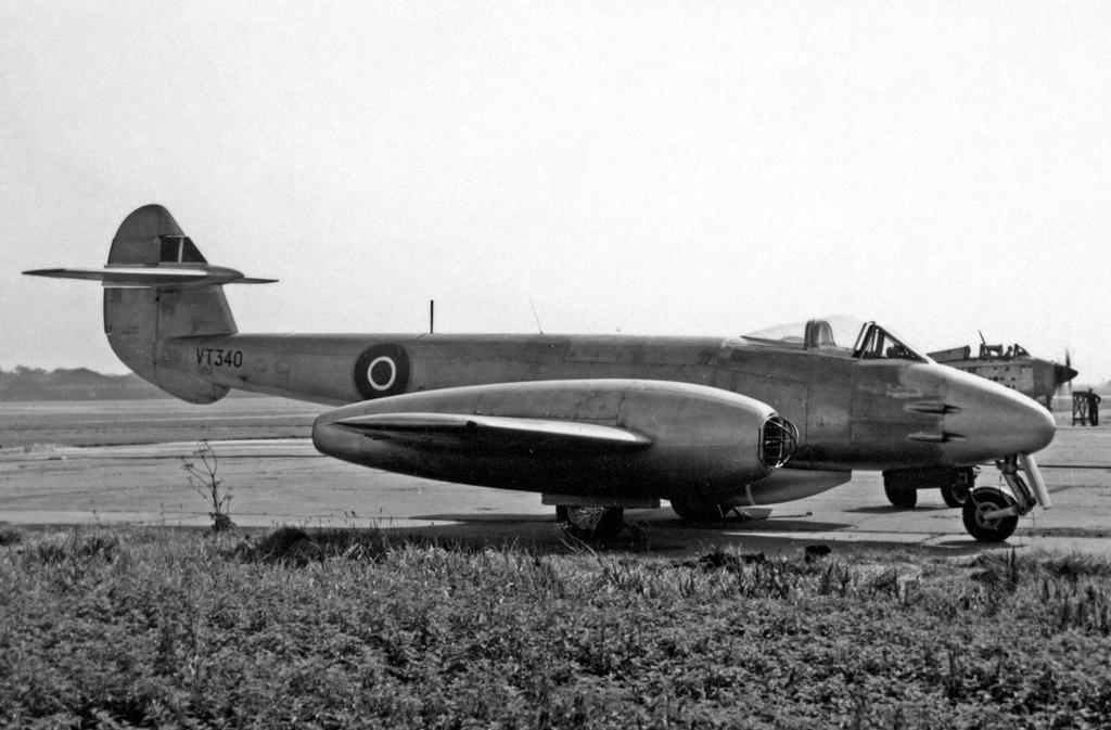 gloste10.jpg